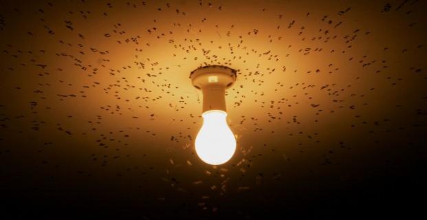 Umelé osvetlenie